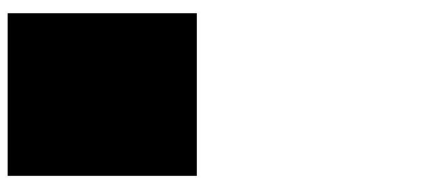 Molly's My Mag logo signature script